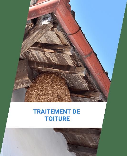 traitement de toiture à Annecy | Saded Savoie