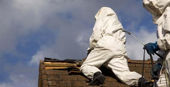 Démoussage sur toiture à Annecy | Saded Savoie